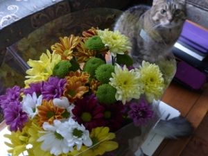 flowers-teresa-and-timothy